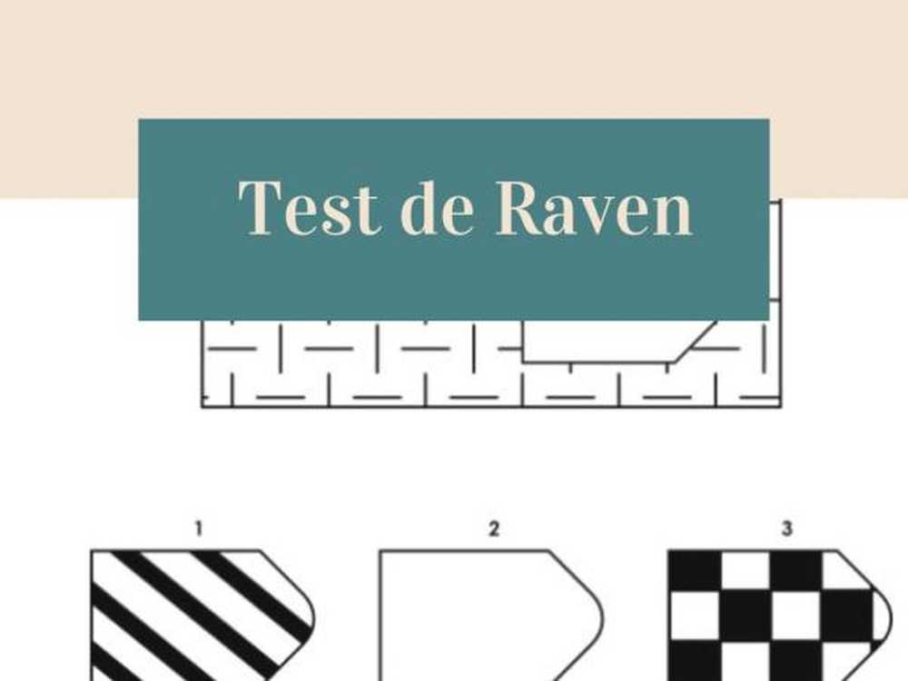 Raven test de interpretare a rezultatelor